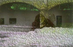 IMAG0687