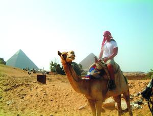 Adam Zettel, Egypt